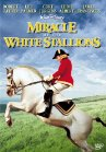 Miracle of the White Stallions Posteri