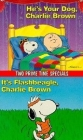 It's Flashbeagle, Charlie Brown Posteri