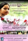 Owl and the Sparrow Posteri