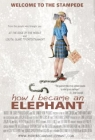 How I Became an Elephant Posteri