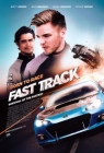 Born to Race: Fast Track Posteri