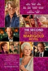 The Second Best Exotic Marigold Hotel Posteri